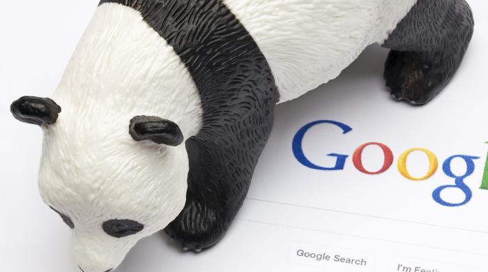 Thumbnail image for A History of Google Panda